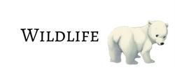 Go to list of wildlife webcomics